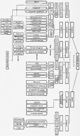 3.1. Общие понятия и классификация тактики